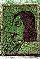 Ботанический портрет писателя - panoramio.jpg