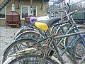 Велосы (465018751).jpg