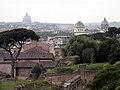 Вид с Палатина. Собор Св.Петра и Синагога.jpg