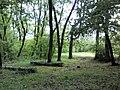 В лесу на Хортице.май 2012 - panoramio.jpg