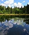 Дике озеро або ж Озірце.jpg