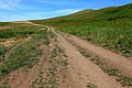 Дорога у подножия горы Верблюжка в северном направлении - panoramio.jpg