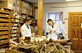 Лаборатория континентальных экосистем мезозоя и кайнозоя НИ ТГУ (Томск) 09.JPG