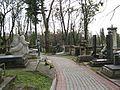 Личаківське кладовище - panoramio.jpg