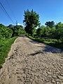 Нижчі Вовківці, кам'яна дорога на Розсоша.jpg