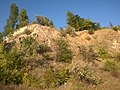 Октябрьский гранитный карьер - panoramio (28).jpg