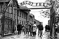 Освобожденных оставшихся в живых узников концлагеря Освенцим выводят из лагеря.jpeg