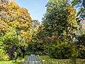 Осенний ботанический сад.jpg