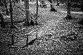 Осенняя хандра.jpg
