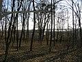 Парк в Красносілці 6.jpg