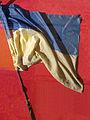 Прапор 92-ї ОМБ під Іловайськом.jpg
