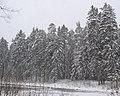 Фото путешествия по Беларуси 034.jpg
