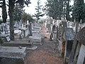 בית קברות תרן רחובות צילום רחלי רוגל (3.jpg