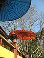 เลม่อนฮิลล์ เกสเฮาส์ , Lemon Hill Guesthouse@ Soppong - panoramio.jpg