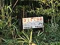 ゴミすて禁止 - panoramio.jpg