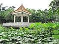古镇文化公园 - panoramio (1).jpg