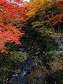 岩屋堂公園 (愛知県瀬戸市岩屋町) - panoramio (14).jpg