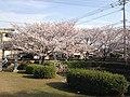 旧円融寺庭園 - panoramio.jpg