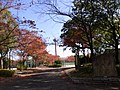 楠公園 - panoramio.jpg