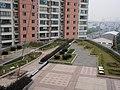 温州人才大厦裙楼顶的花园 - panoramio.jpg