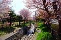 福住小川公園(Fukuzumi creek park) - panoramio (2).jpg