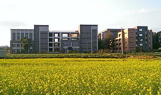 Taichung Japanese School