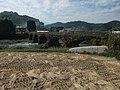 長瀬橋 - panoramio.jpg