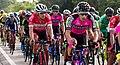 11 Etapa-Vuelta a Colombia 2018-Ciclistas en el Peloton 1.jpg
