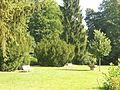 12-09-11-moorbad-freienwalde-29.jpg