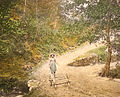 1447 - Waldensian - Picturesque mountain path (man with wood cart).jpg