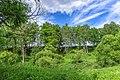16 Остепненные склоны и балочные леса по правому берегу долины р. Осетрик.jpg