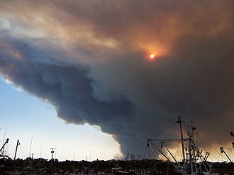 Pine Barrens (New Jersey) - The 2007 forest fire viewed from Barnegat Light
