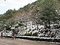 2010年12月15日夜里的那场雪 - panoramio (3).jpg