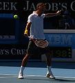 2011 Australian Open IMG 6035 2 (5444779618).jpg