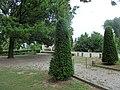 2015-05-21 Mantova, fiume Mincio 10.jpg