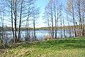 2015 26 Национальный парк Мещёрский - озеро Ютница.jpg