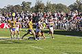 2015 City v Country match in Wagga Wagga (15).jpg