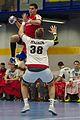 20170114 Handball AUT SUI DSC 9727.jpg