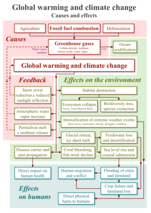 20200118 Global warming and climate change - vertical block diagram - causes effects feedback.png