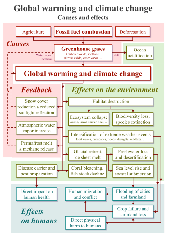 Reason of Global Warming and it's negative impacts in climate change since 2000