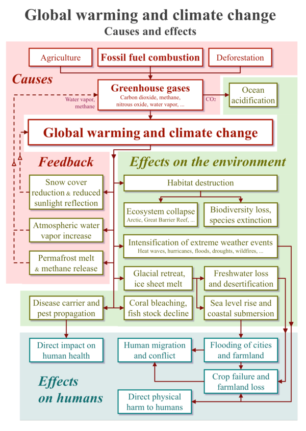 The primary causes and the wide-ranging effects of global warming and resulting climate change. Some effects constitute feedback mechanisms that intensify climate change and move it toward climate tipping points. 20200118 Global warming and climate change - vertical block diagram - causes effects feedback.png