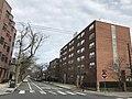 2020 Wendell Street Cambridge Massachusetts US.jpg