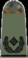 251-Major.png
