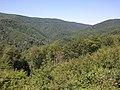 34322, Šušnjari, Croatia - panoramio (1).jpg