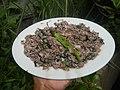 4087Ants Common houseflies foods delicacies of Bulacan 14.jpg