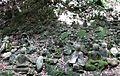 500 Rakan at Kiyomizu-dera 02.jpg