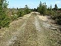 6830 Norre Nebel, Denmark - panoramio (6).jpg