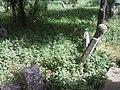 7645 Nova Cherna, Bulgaria - panoramio (5).jpg