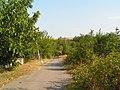 8921 Omarchevo, Bulgaria - panoramio (124).jpg