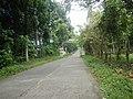 9501Poblacion Del Carmen, Alaminos, Road 24.jpg